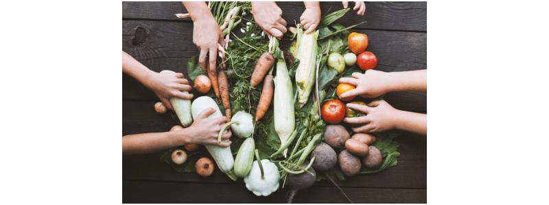 agricultura sostenible para el hambre cero